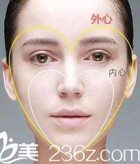心形脸的结构与特征