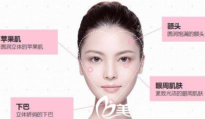 脂肪可以填充全脸的位置