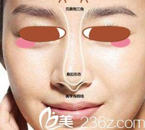 女人好看的鼻型