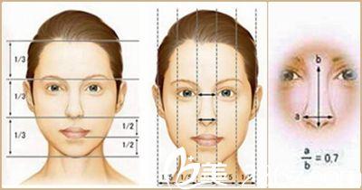 东方艺定制美鼻标准