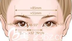 双眼皮设计原理
