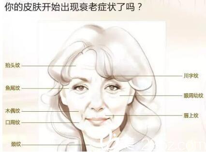 上海华美陈颖为你讲解面部线雕提升,留住青春的美
