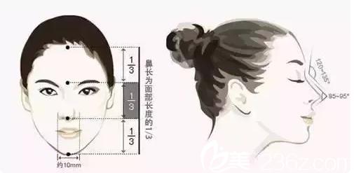 鼻子直接影响五官比例