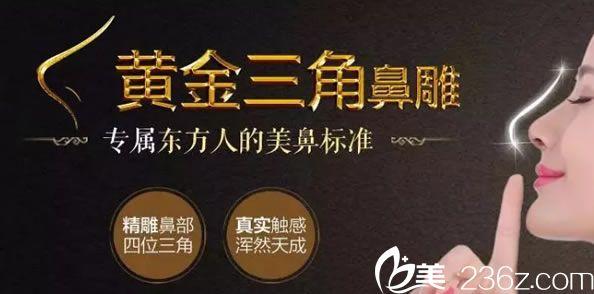 杭州维多黄金三角鼻雕技术发布会