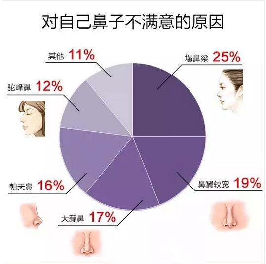 调查显示自己鼻子不满意的原因占比