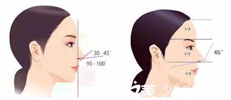 完美鼻部标准