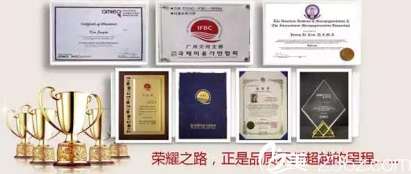 韩国碧昂卡所获荣誉