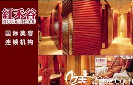 红禾谷国际美容连锁机构
