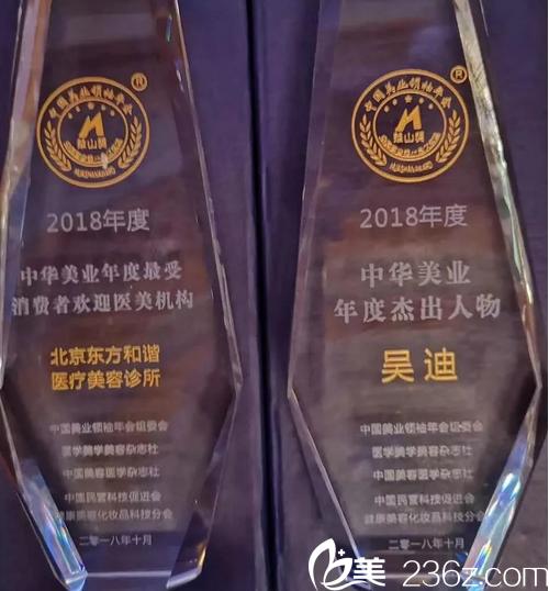 北京东方和谐医院及吴迪院长所获奖项