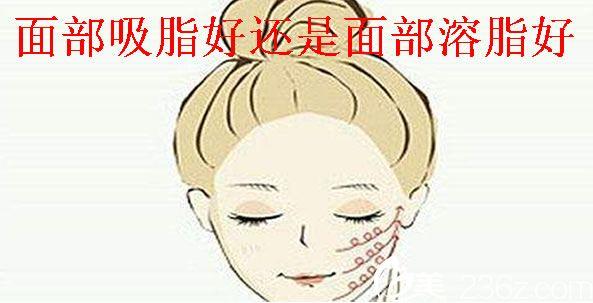面部溶脂打了对身体有伤害吗
