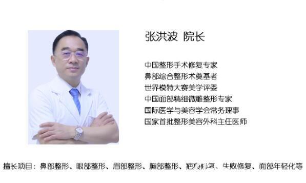 张洪波教授
