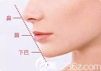 下巴的美学标准鼻唇下巴在一条直线上