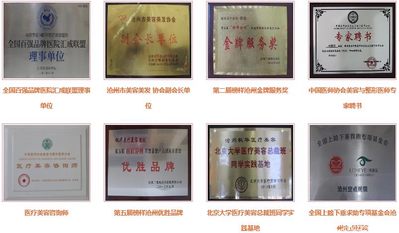 沧州枫华医疗美容医院获得诸多荣誉