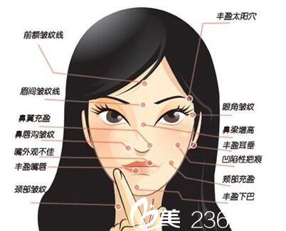 注射美容适合面部的部位