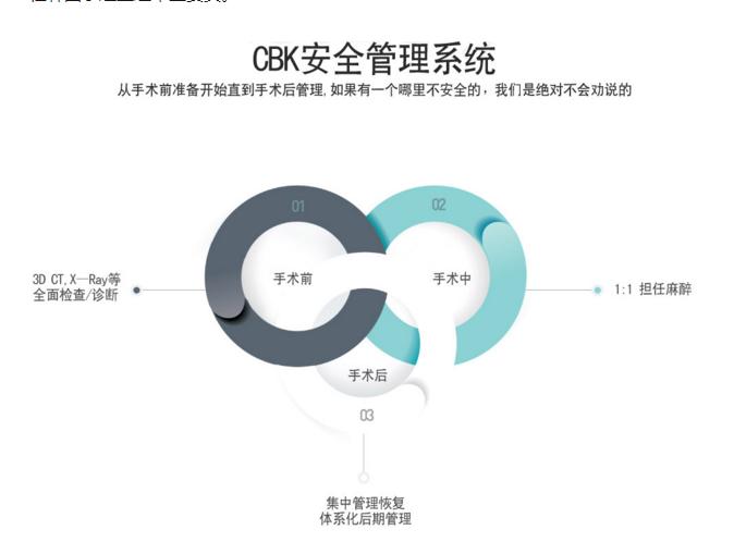 韩国CBK安全管理系统