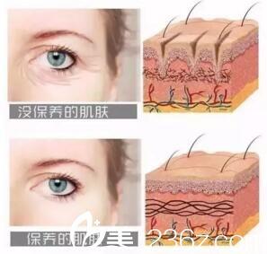 保养的皮肤与没保养的皮肤区别