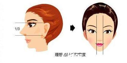 假体隆鼻理想标准