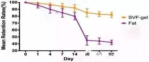 普通脂肪移植和SVF脂肪胶移植成活率对比