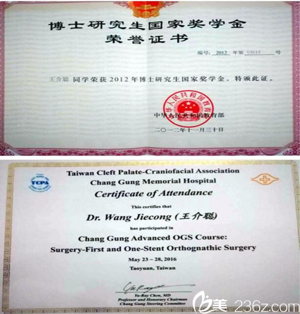 王介聪获得的部分荣誉证书