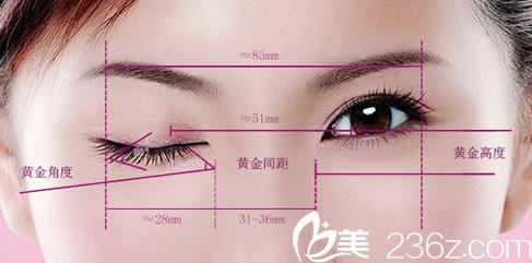 北京奥斯卡医院美眼标准示意图