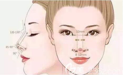 隆鼻标准图