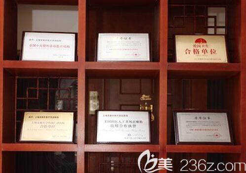 上海美联臣医疗美容医院荣誉
