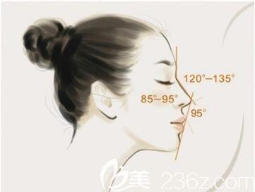 上海美莱医疗美容医院王琳假体隆鼻和玻尿酸隆鼻有什么区别