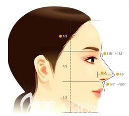 美鼻标准示意图