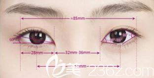 美眼标准示意图