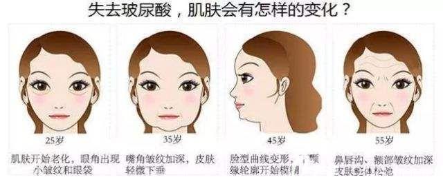 玻尿酸在人体中对肌肤产生的变化