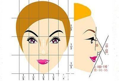 假体隆鼻标准图