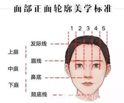 面部正面轮廓美学标准