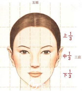 衡量面部标准的三庭五眼法则