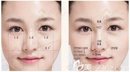 韩国艾恩鼻整形设计标准