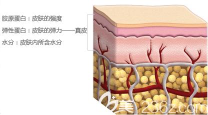 韩国原辰Belody能够改善下垂的肌肤问题