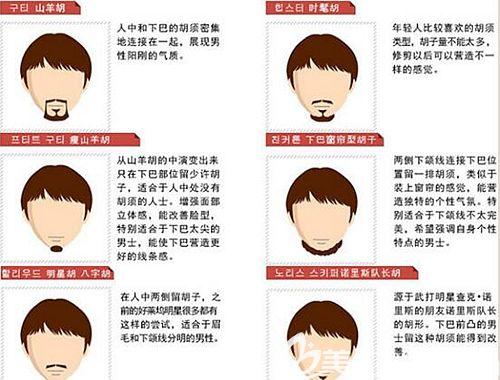 胡须种植的各个类型