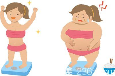 减肥不吃主食能行吗