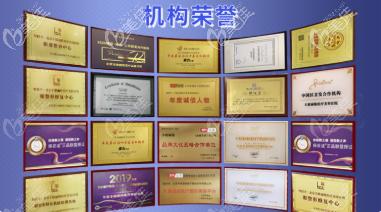 北京丰联丽格医院荣誉证书